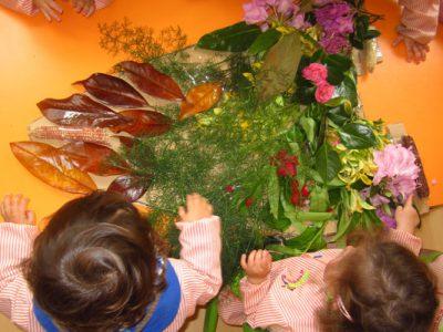 Celebramos la tradición de los maios