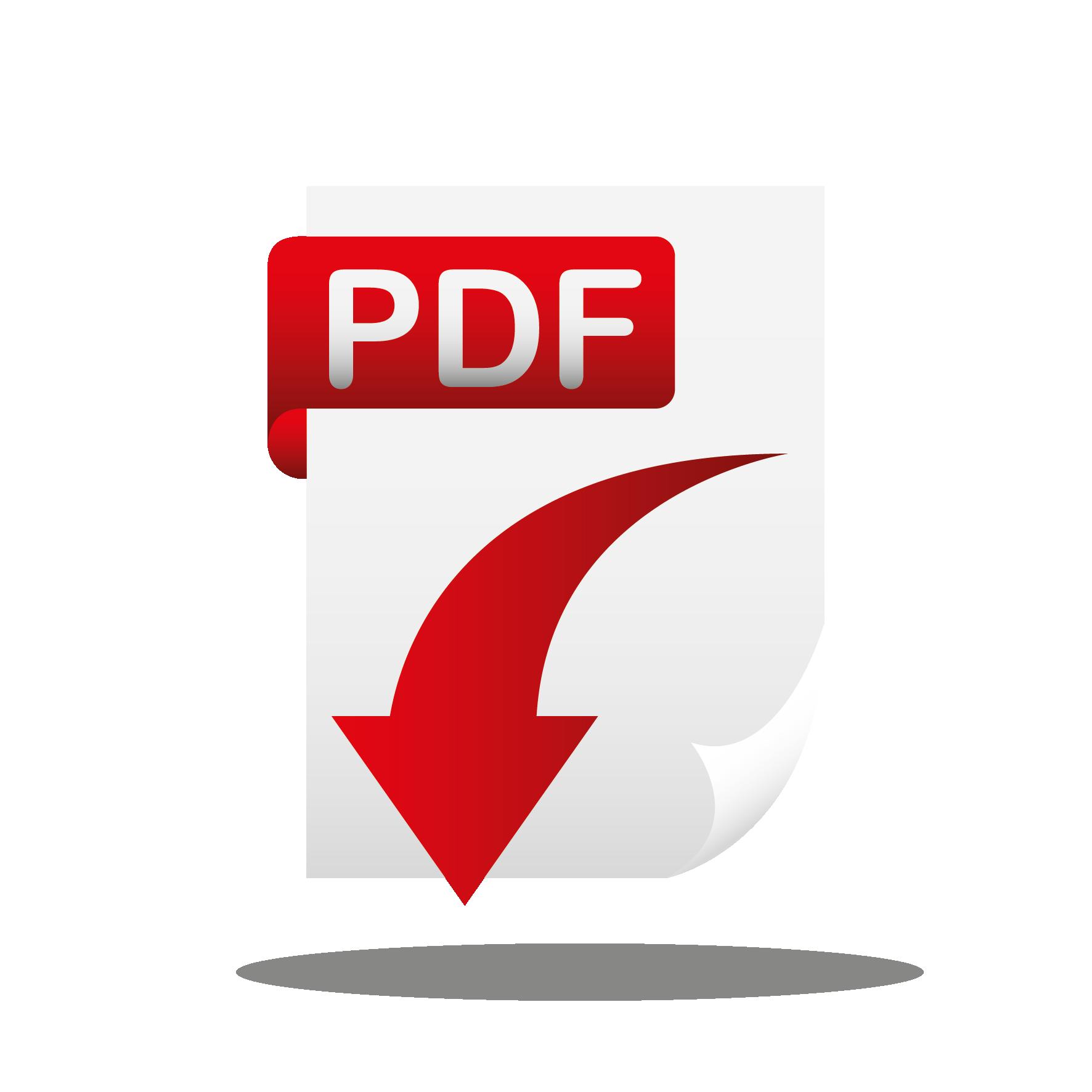 Resultado de imaxes para: icono pdf